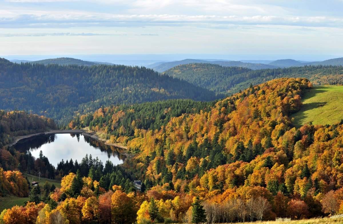 Les Vosges c'est aussi l'automne