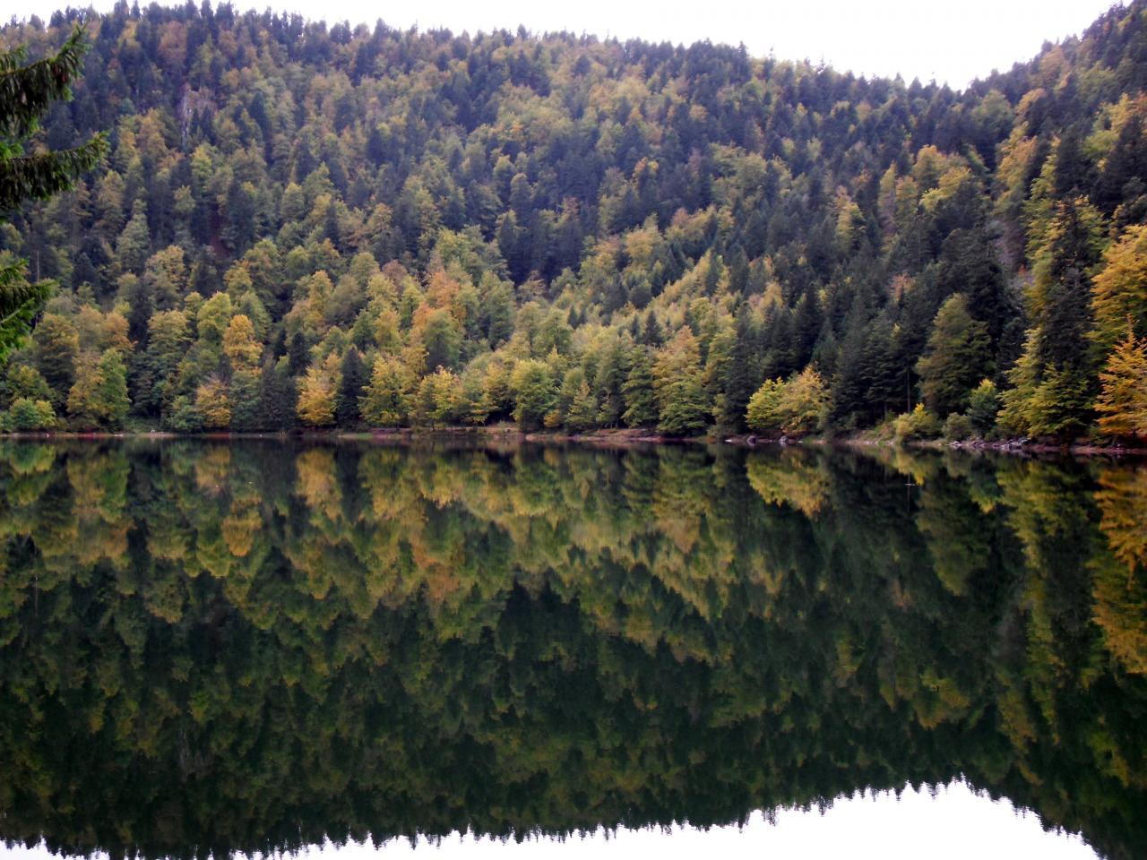 La Bresse, lac des corbeaux