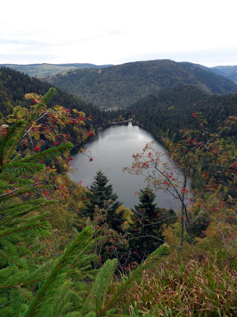 La Bresse, lac des corbeaux depuis la roche du lac